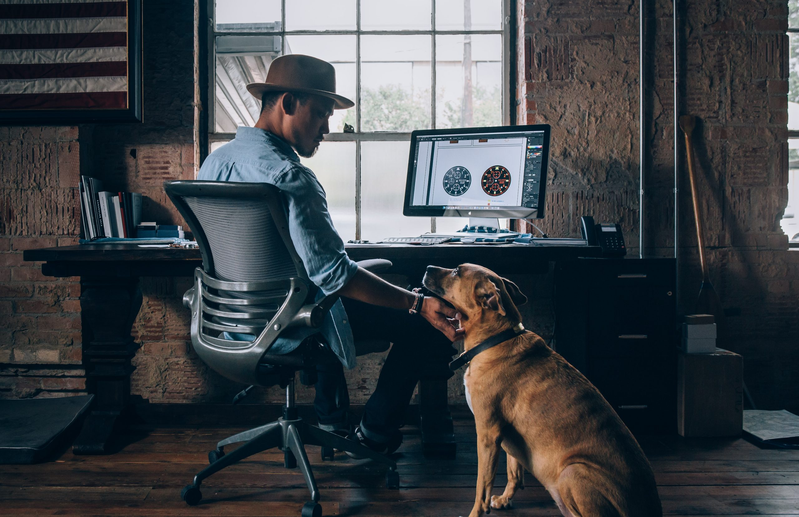 Un chien dans un bureau